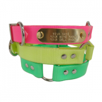 pet-collars-sq