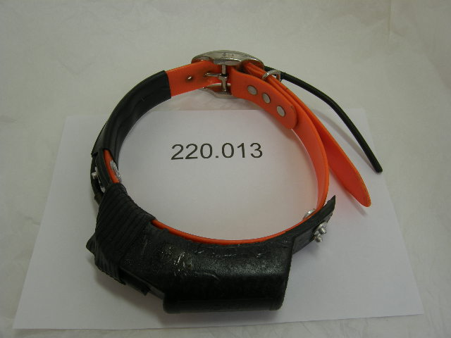 USED Magnum Telemetry Track Collar 220.013 on an Orange collar